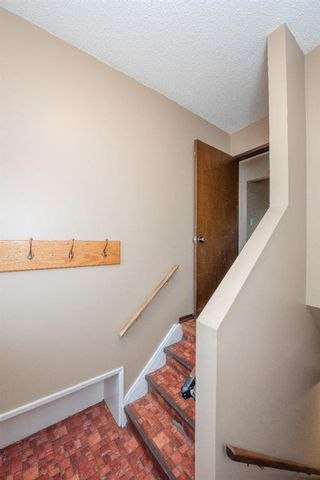 Photo 27: 141 40th Avenue SW in Calgary: Parkhill Detached for sale : MLS®# A1107597