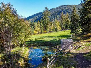 Photo 9: 1492 PAVILION CLINTON ROAD: Clinton Farm for sale (North West)  : MLS®# 164452