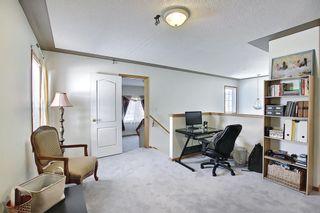 Photo 21: 8230 Saddleridge Drive NE in Calgary: Saddle Ridge Detached for sale : MLS®# A1085120