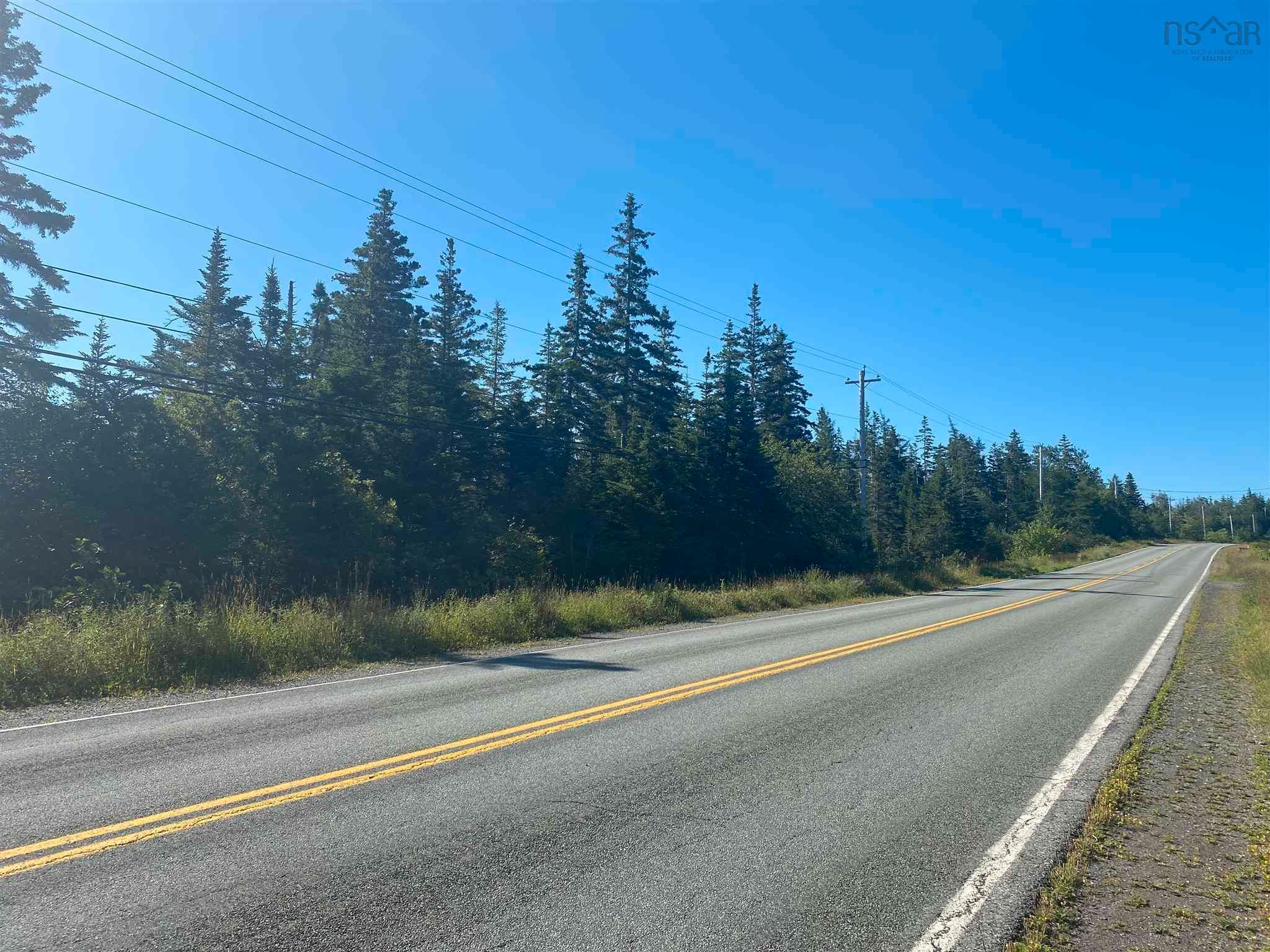 Main Photo: Lot Highway 320 in Pondville: 305-Richmond County / St. Peters & Area Vacant Land for sale (Highland Region)  : MLS®# 202119586