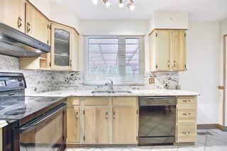 Photo 9: 3203 Oakwood Drive SW in Calgary: Oakridge Detached for sale : MLS®# A1109822