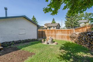Photo 34: 135 Doverglen Place SE in Calgary: Dover Detached for sale : MLS®# A1058125