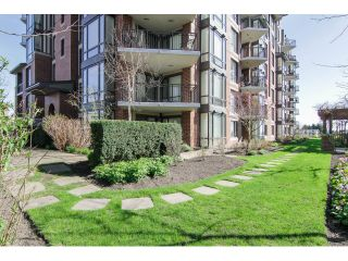 """Photo 23: 205 1551 FOSTER Street: White Rock Condo for sale in """"Sussex House"""" (South Surrey White Rock)  : MLS®# F1407910"""