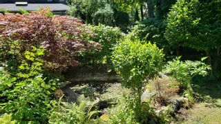 Photo 7: 3350 CYPRESS Street in Vancouver: Shaughnessy House for sale (Vancouver West)  : MLS®# R2618794