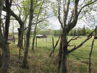 Photo 34: 63202 RR 194: Rural Thorhild County House for sale : MLS®# E4246203