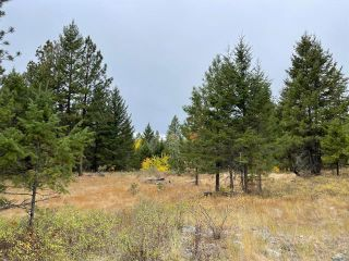 Photo 7: 490 WAPITI Way, in Osoyoos: Vacant Land for sale : MLS®# 191574