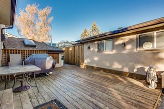 Photo 25: 8 Mckenna Road SE in Calgary: McKenzie Lake Detached for sale : MLS®# A1049064