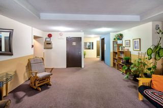 Photo 2: 314 331 KNOX STREET in New Westminster: Sapperton Condo for sale : MLS®# R2238098