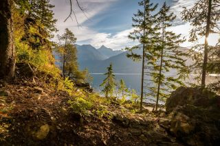 Photo 27: Lot 7879 HIGHWAY 31 in Kaslo: Vacant Land for sale : MLS®# 2461475