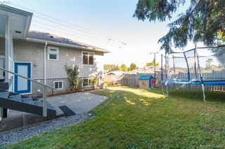Photo 29: 3929 Braefoot Rd in VICTORIA: SE Cedar Hill House for sale (Saanich East)  : MLS®# 821071