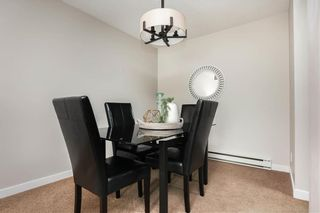 Photo 9: 24 340 Carriage Road in Winnipeg: Heritage Park Condominium for sale (5H)  : MLS®# 202120427