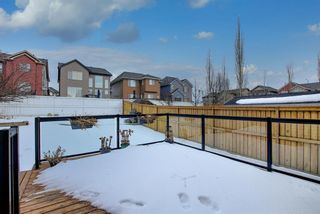Photo 31: 54 Evanspark Terrace NW in Calgary: Evanston Residential for sale : MLS®# A1060196