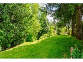 Photo 16: 4848 246A Street in Langley: Salmon River House for sale : MLS®# R2530745