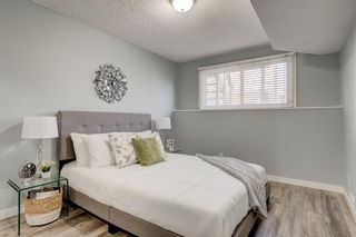 Photo 16: Unit C 130 29 Avenue NW in Calgary: Tuxedo Park Apartment for sale : MLS®# A1078880
