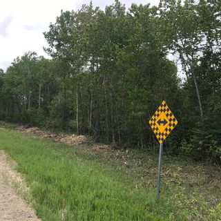 Photo 5: 0 84N Road in Brokenhead Rm: Vacant Land for sale : MLS®# 202001618