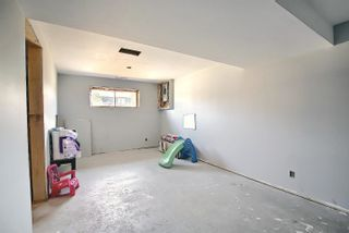Photo 38:  in Edmonton: Zone 35 House for sale : MLS®# E4254409