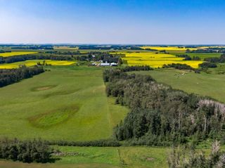 Photo 25: 461017A RR 262: Rural Wetaskiwin County House for sale : MLS®# E4255011