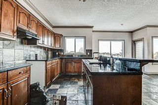 Photo 18: 36 ROYAL HIGHLAND Court NW in Calgary: Royal Oak Detached for sale : MLS®# A1029258