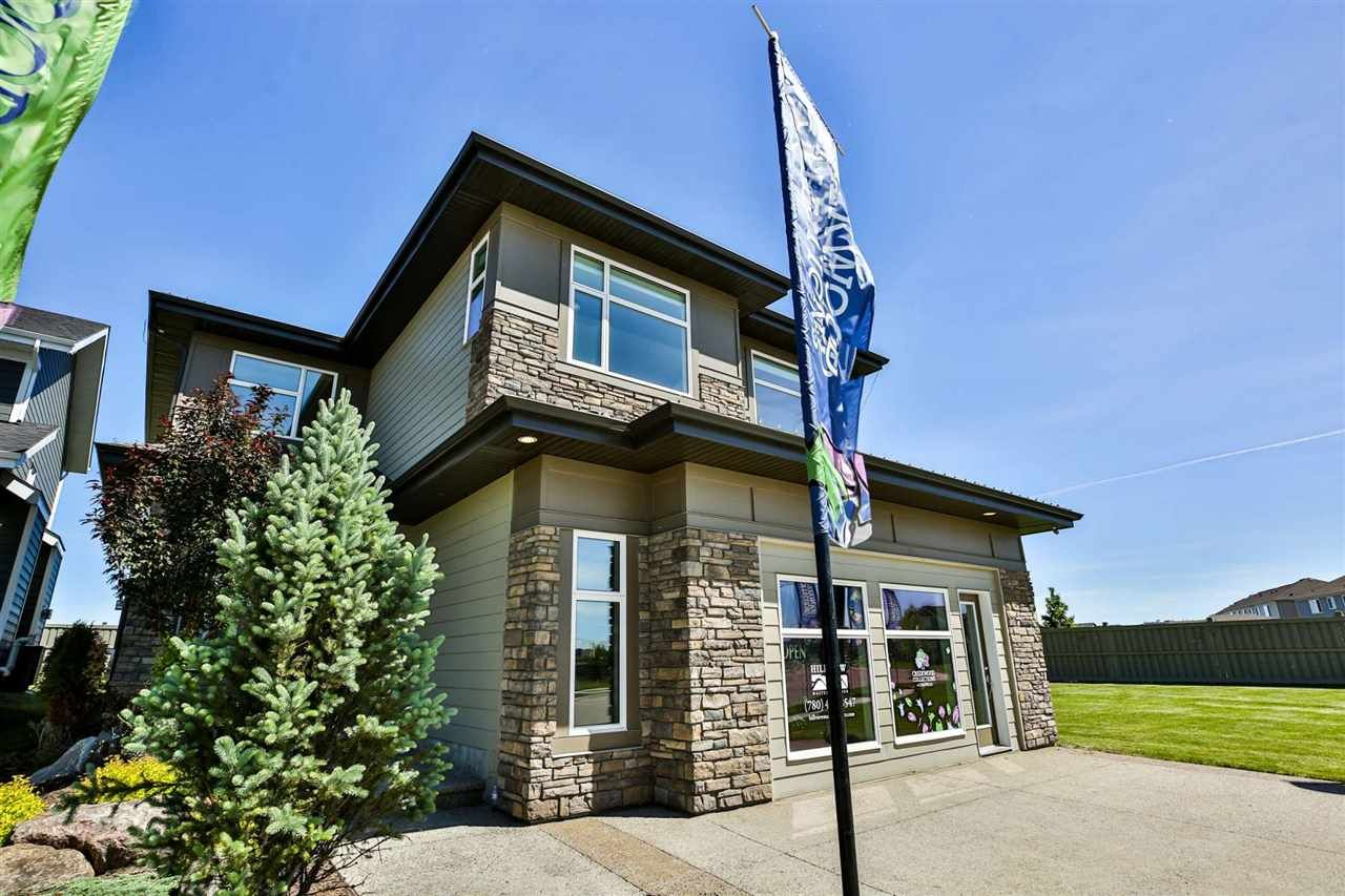 Main Photo: 4691 CHEGWIN Wynd in Edmonton: Zone 55 House for sale : MLS®# E4248341