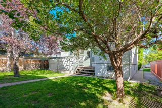Photo 42: 509 ALEXANDER Crescent NW in Calgary: Rosedale Detached for sale : MLS®# A1091236