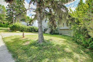 Photo 4: 2219 28 Avenue SW in Calgary: Richmond Detached for sale : MLS®# A1057795