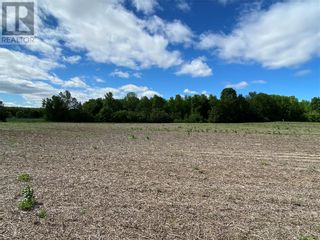Photo 3: N/A DOMAINE STREET in St Eugene: Vacant Land for sale : MLS®# 1244115