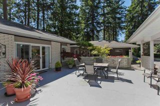 "Photo 17: 17303 23 Avenue in Surrey: Pacific Douglas House for sale in ""Grandview Heights NCP 5"" (South Surrey White Rock)  : MLS®# R2573273"