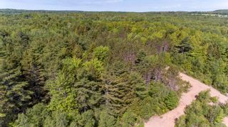 Photo 9: Lots St. Phillips Street in Bridgewater: 405-Lunenburg County Vacant Land for sale (South Shore)  : MLS®# 202115973