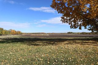 Photo 6: TWP 491 RR 273: Rural Leduc County Rural Land/Vacant Lot for sale : MLS®# E4264523