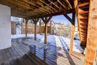 Photo 43: 36 ROYAL HIGHLAND Court NW in Calgary: Royal Oak Detached for sale : MLS®# A1029258
