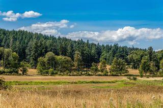 Photo 14: 390 Brookleigh Rd in : SW West Saanich Land for sale (Saanich West)  : MLS®# 883439