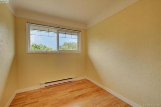 Photo 10: 4051 Hodgson Pl in VICTORIA: SE Lake Hill House for sale (Saanich East)  : MLS®# 842061