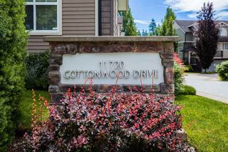 "Photo 31: 59 11720 COTTONWOOD Drive in Maple Ridge: Cottonwood MR Townhouse for sale in ""COTTONWOOD GREEN"" : MLS®# R2468863"