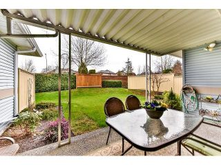 Photo 20: # 21 8889 212ND ST in Langley: Walnut Grove Condo for sale