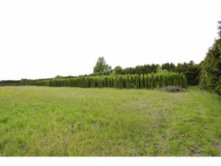 """Photo 5: 7200 216TH Street in Langley: Willoughby Heights Land for sale in """"Milner"""" : MLS®# F1411651"""