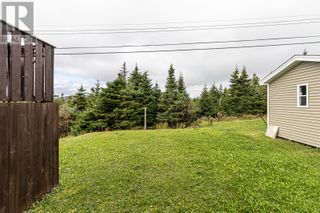 Photo 40: 124 Mallow Drive in Paradise: House for sale : MLS®# 1237512