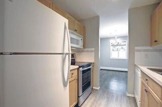 Photo 14: 1113 11 Chaparral Ridge Drive SE in Calgary: Chaparral Apartment for sale : MLS®# A1145437