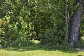 Photo 1: 2675 Lakeshore Drive in Ramara: Brechin Property for sale : MLS®# S4481993