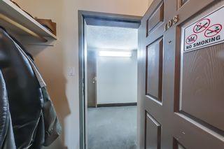 Photo 5: 103 9116 106 Avenue in Edmonton: Zone 13 Condo for sale : MLS®# E4264021