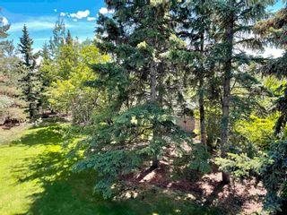 Photo 39: 12433 28 Avenue in Edmonton: Zone 16 House for sale : MLS®# E4245223