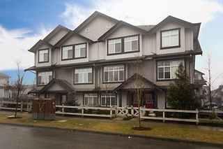 """Photo 1: 50 18839 69TH Avenue in Surrey: Clayton Townhouse for sale in """"Starpoint II"""" (Cloverdale)  : MLS®# F2903264"""