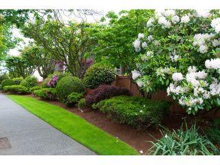 Photo 19: # 309 265 E 15TH AV in Vancouver: Mount Pleasant VE Condo for sale (Vancouver East)  : MLS®# V1012093