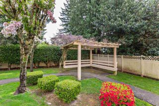 """Photo 33: 410 33731 MARSHALL Road in Abbotsford: Central Abbotsford Condo for sale in """"Stephanie Place"""" : MLS®# R2590546"""