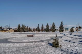 Photo 49: 2446 28 Avenue SW in Calgary: Richmond Detached for sale : MLS®# A1070835