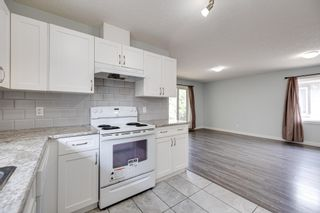 Photo 12: 11235 52 Street in Edmonton: Zone 09 House for sale : MLS®# E4252061