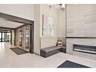 """Photo 3: 227 21009 56 Avenue in Langley: Salmon River Condo for sale in """"Cornerstone"""" : MLS®# R2429408"""