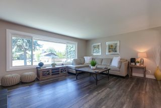 Photo 5: 11668 Holly Street in Maple Ridge: Home for sale : MLS®# R2292210