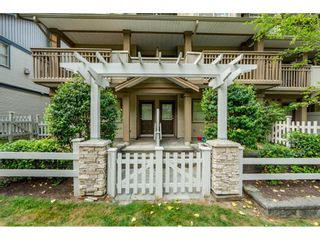 """Photo 18: 45 19250 65 Avenue in Surrey: Clayton Townhouse for sale in """"SUNBERRY COURT"""" (Cloverdale)  : MLS®# R2297371"""