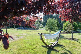 Photo 87: 1422 Lupin Dr in Comox: CV Comox Peninsula House for sale (Comox Valley)  : MLS®# 884948