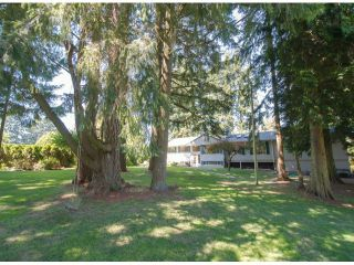Photo 5: 13885 18TH Avenue in Surrey: Sunnyside Park Surrey House for sale (South Surrey White Rock)  : MLS®# F1431118